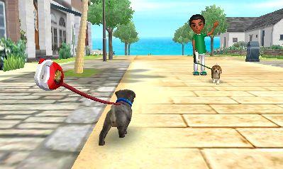 Nintendogs+Cats: Gassigehen in 3D? Man, eigentlich klingt das völlig bescheuert...